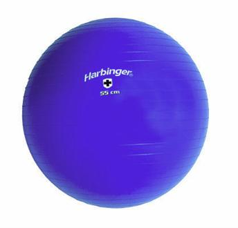 Harbinger Training Ball